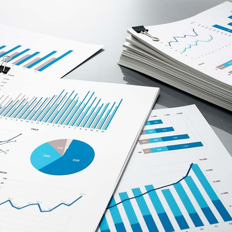 Agencia de la Propiedad Industrial - Informe de marca